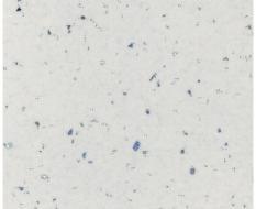 0101 1А Андромеда белая