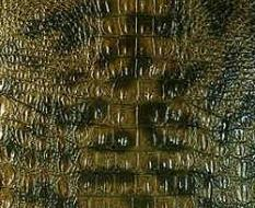029 Аллигатор зеленый глянец