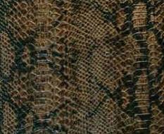 031 Змея коричневая глянец