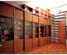 Шкаф-купе библиотека на заказ