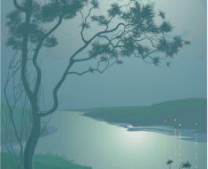 moonlit_night_01
