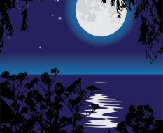 moonlit_night_04