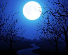 moonlit_night_05